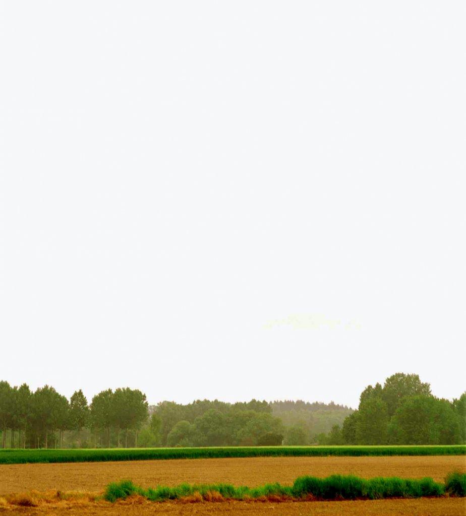 Paysage 2000 concernant paysages francais, 2000-2005 - xavierzimmermann.fr